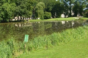 Teich Arc-en-Barrois